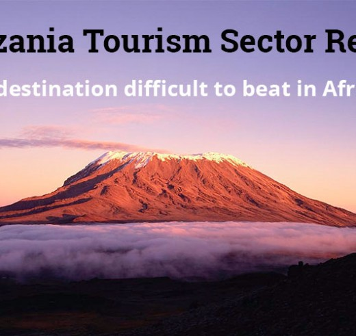 Tanzania Tourism Sector Report 2015: Record Of Arrivals In 2014