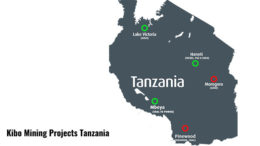 Kibo Mining projects in Tanzania