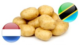 tanzania netherlands mou potato