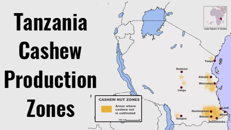 Tanzania Cashew Production Zones