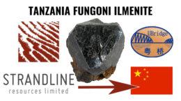Tanzania Fungoni Ilemnite