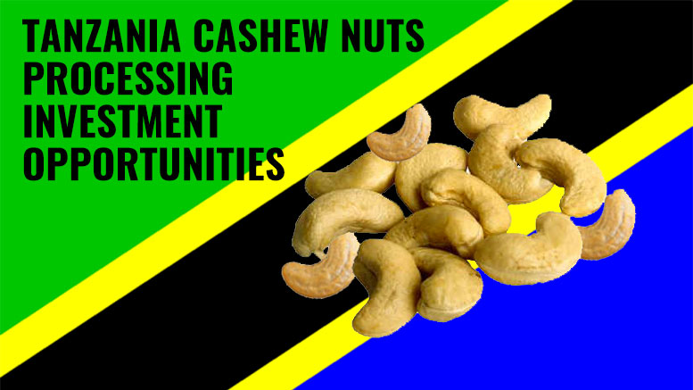 Tanzania cashew nuts investment opportunities