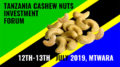 Tanzania cashew nuts investment forum 2019