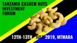 Tanzania cashew nuts investment forum 2019