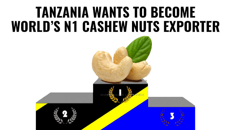Tanzania aims to become N1 cashew nuts exporter