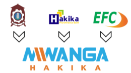 TANZANIA MWANGA HAKIKA EFC MERGER
