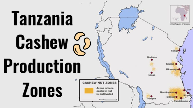 TANZANIA CASHEW CULTIVATION ZONES