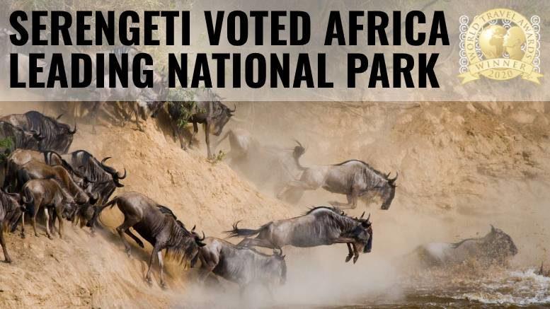 Serengeti Africa Leading National Park 2020