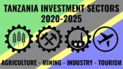 Tanzania Investment Sector 2020-2025